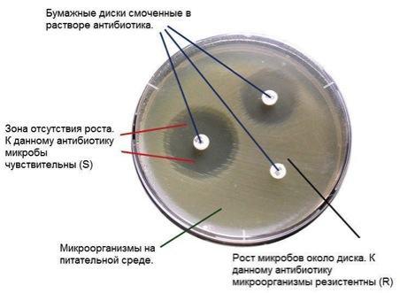 аллергия на цефтриаксон лечение