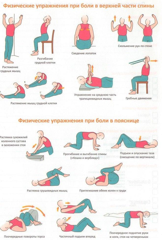 Лечебная физкультура (ЛФК) при боли в спине